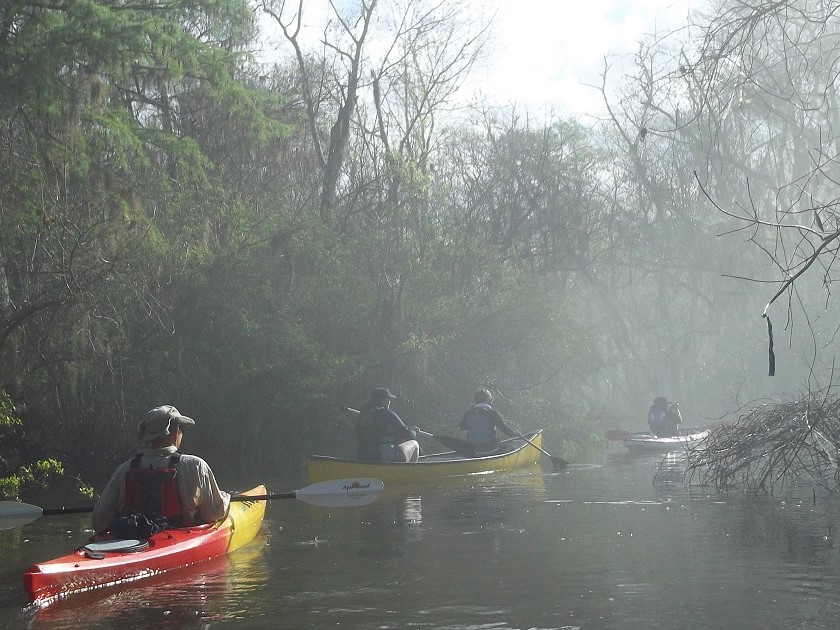 Georgia Conservancy paddlers wind through the flooded backwaters of the Altamaha