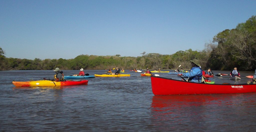Kayaks regrouping on the Altamaha